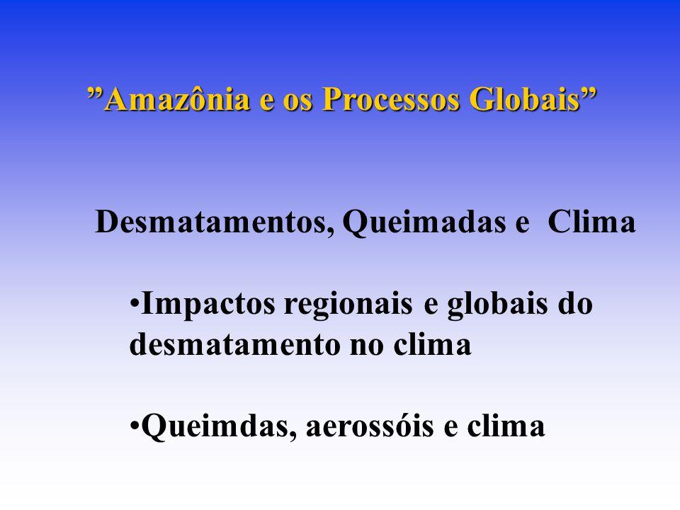 Amazônia e os Processos Globais Desmatamentos, Queimadas e Clima Impactos regionais e globais do desmatamento no clima Queimdas, aerossóis e clima