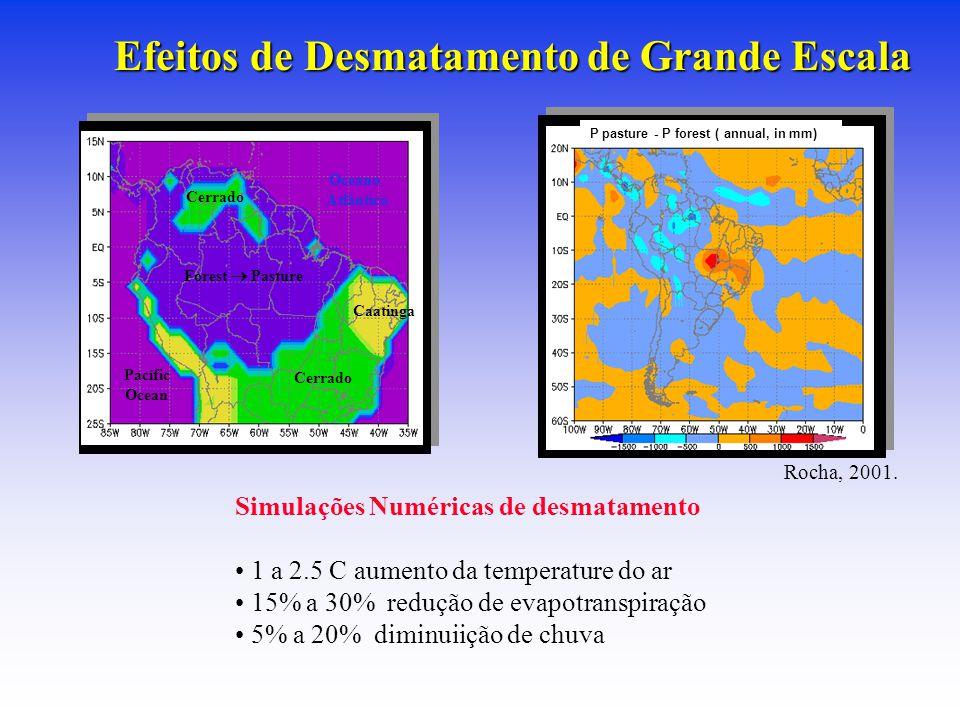 Forest  Pasture Caatinga Cerrado Oceano Atlântico Pacífic Ocean P pasture - P forest ( annual, in mm) Efeitos de Desmatamento de Grande Escala Rocha, 2001.