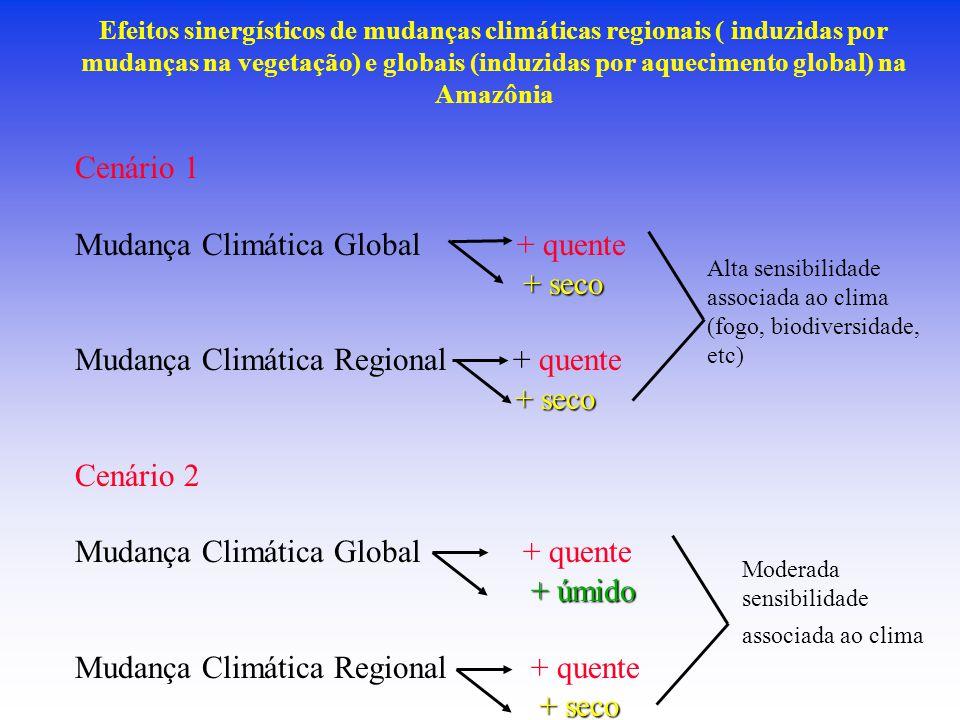Efeitos sinergísticos de mudanças climáticas regionais ( induzidas por mudanças na vegetação) e globais (induzidas por aquecimento global) na Amazônia Cenário 1 Mudança Climática Global + quente + seco Mudança Climática Regional + quente + seco Cenário 2 Mudança Climática Global + quente + úmido Mudança Climática Regional + quente + seco Alta sensibilidade associada ao clima (fogo, biodiversidade, etc) Moderada sensibilidade associada ao clima