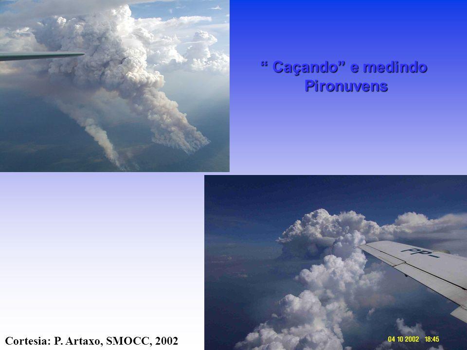 Caçando e medindo Pironuvens Cortesia: P. Artaxo, SMOCC, 2002