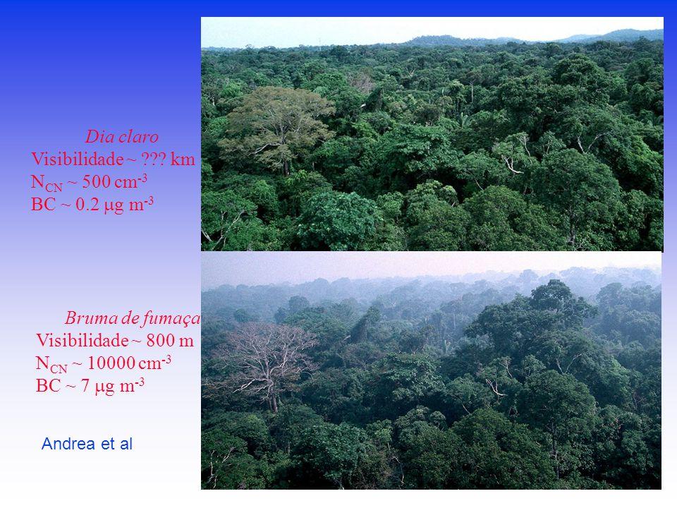 Bruma de fumaça Visibilidade ~ 800 m N CN ~ 10000 cm -3 BC ~ 7  g m -3 Dia claro Visibilidade ~ ??.