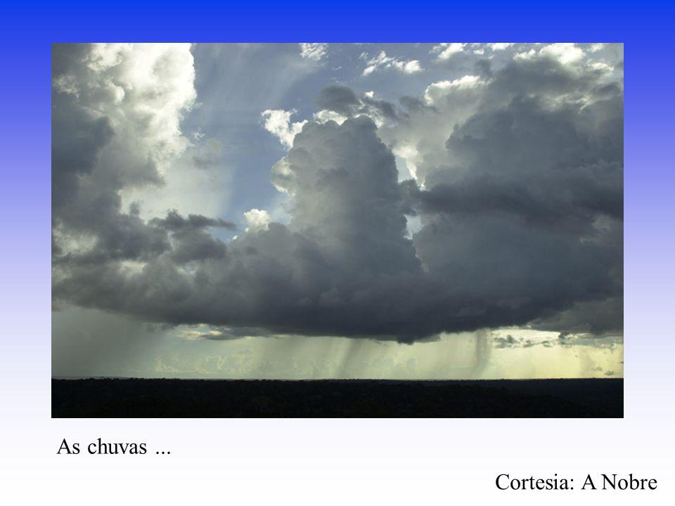 As chuvas... Cortesia: A Nobre