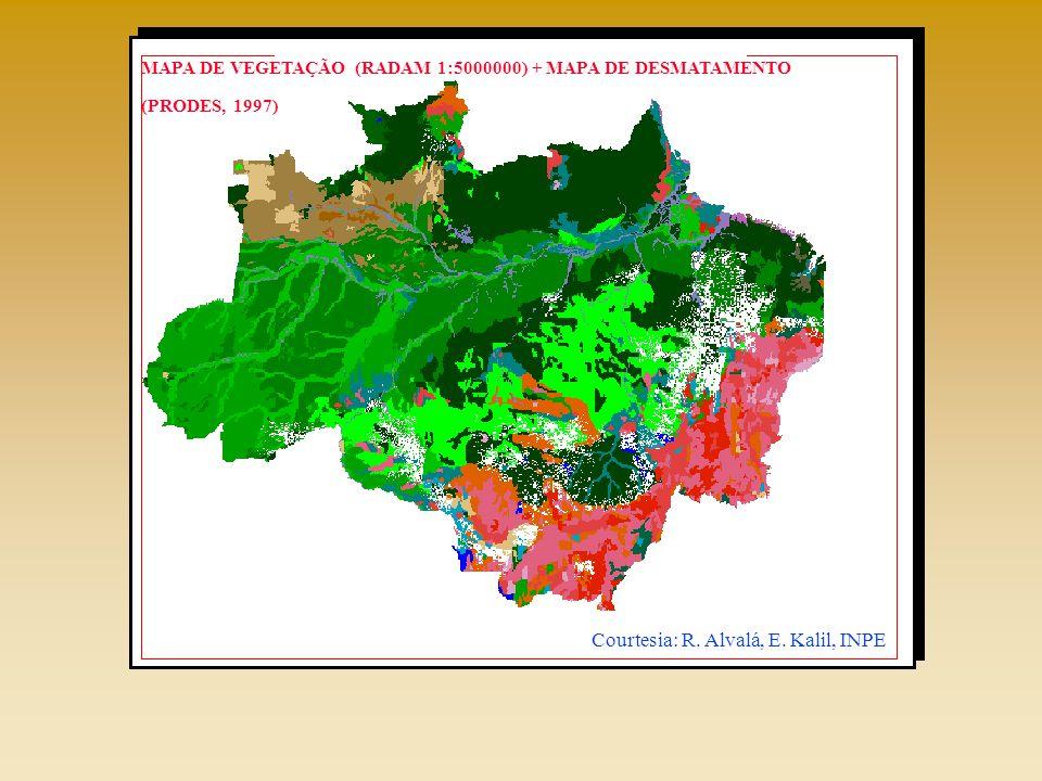 MAPA DE VEGETAÇÃO (RADAM 1:5000000) + MAPA DE DESMATAMENTO (PRODES, 1997) Courtesia: R.