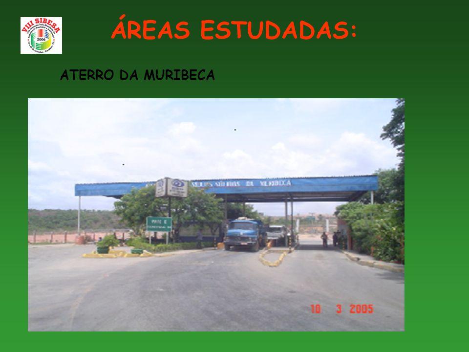 ÁREAS ESTUDADAS: ATERRO DA MURIBECA