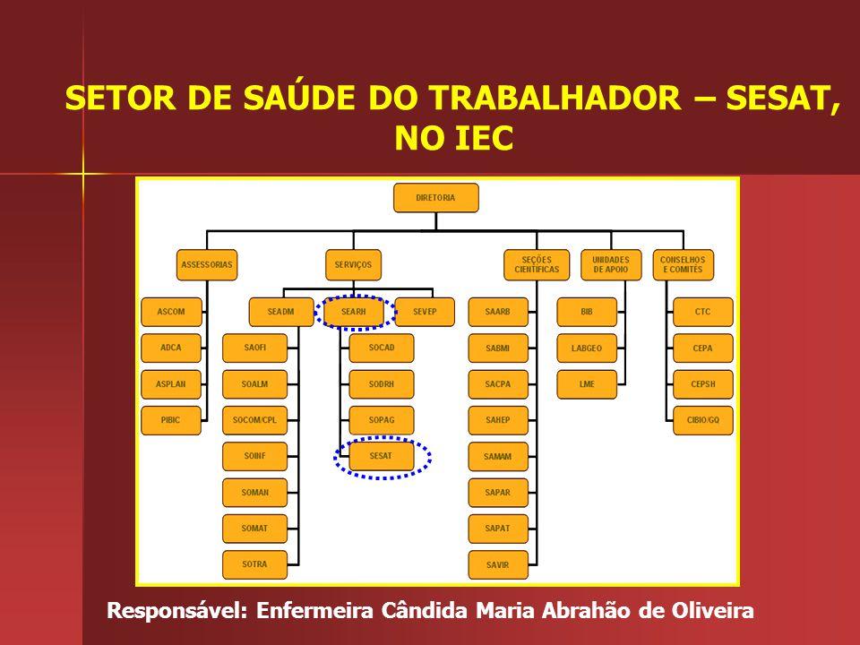 VACINAÇÃO CONTINUADA DOS TRABALHADORES DO IEC 2006 a 2008* FONTE: SESAT/SEARH/IEC SESAT