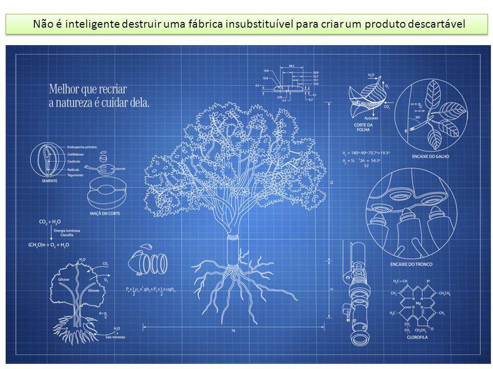 Não é inteligente destruir uma fábrica insubstituível para criar um produto descartável