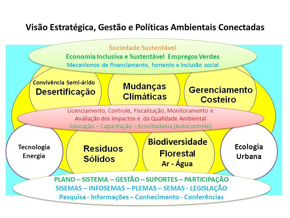 Visão Estratégica, Gestão e Políticas Ambientais Conectadas Sociedade Sustentável Economia Inclusiva e Sustentável Empregos Verdes Mecanismos de finan