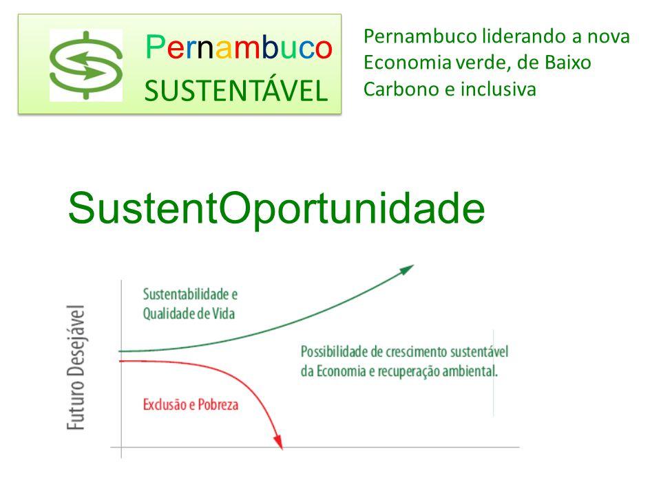 Importância Estratégica do Conhecimento e da inovação Áreas Críticas ENERGIA TRANSPORTE PLANEJAMENTO URBANO RESÍDUOS (INDÚSTRIA REVERSA) PRODUÇÃO AGRÍCOLA Pernambuco SUSTENTÁVEL Pernambuco SUSTENTÁVEL Detectar EIXOS DO FUTURO e ligar com VOCAÇÕES e POTENCIALIDADES