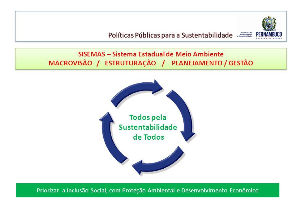Priorizar a Inclusão Social, com Proteção Ambiental e Desenvolvimento Econômico SISEMAS – Sistema Estadual de Meio Ambiente MACROVISÃO / ESTRUTURAÇÃO