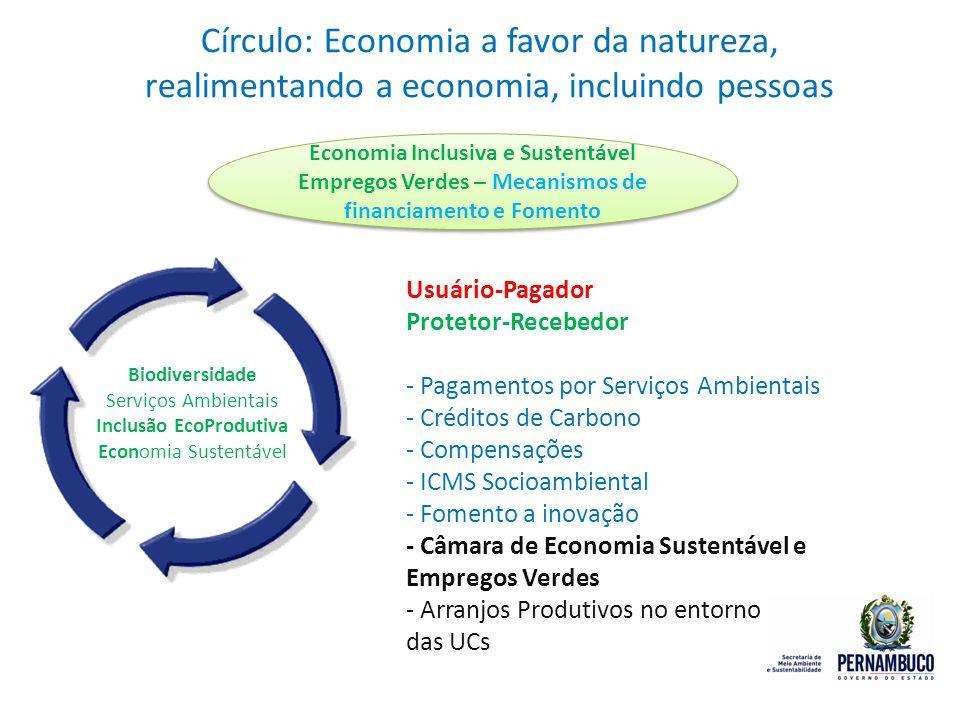 Círculo: Economia a favor da natureza, realimentando a economia, incluindo pessoas Biodiversidade Serviços Ambientais Inclusão EcoProdutiva Economia S