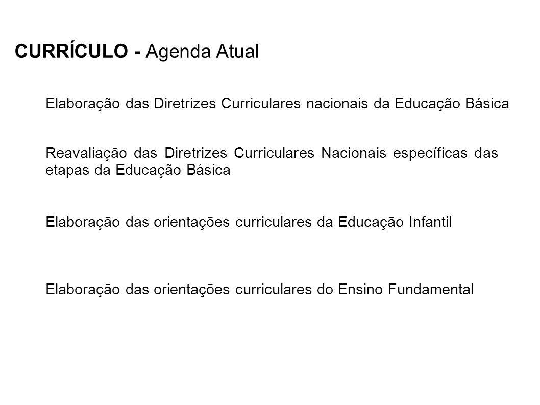 CURRÍCULO - Agenda Atual Elaboração das orientações curriculares da Educação Infantil Reavaliação das Diretrizes Curriculares Nacionais específicas da
