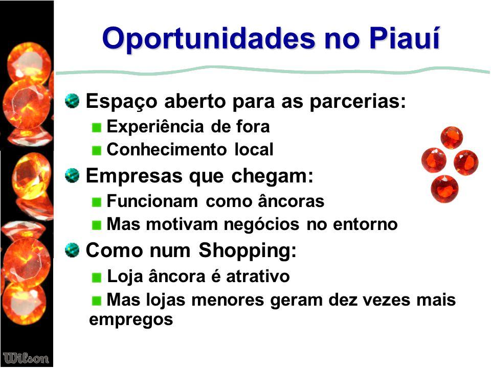 Oportunidades no Piauí Espaço aberto para as parcerias: Experiência de fora Conhecimento local Empresas que chegam: Funcionam como âncoras Mas motivam