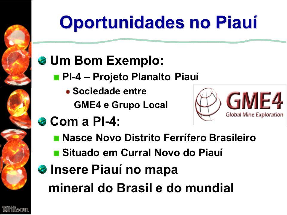 Oportunidades no Piauí Um Bom Exemplo: PI-4 – Projeto Planalto Piauí Sociedade entre GME4 e Grupo Local Com a PI-4: Nasce Novo Distrito Ferrífero Bras