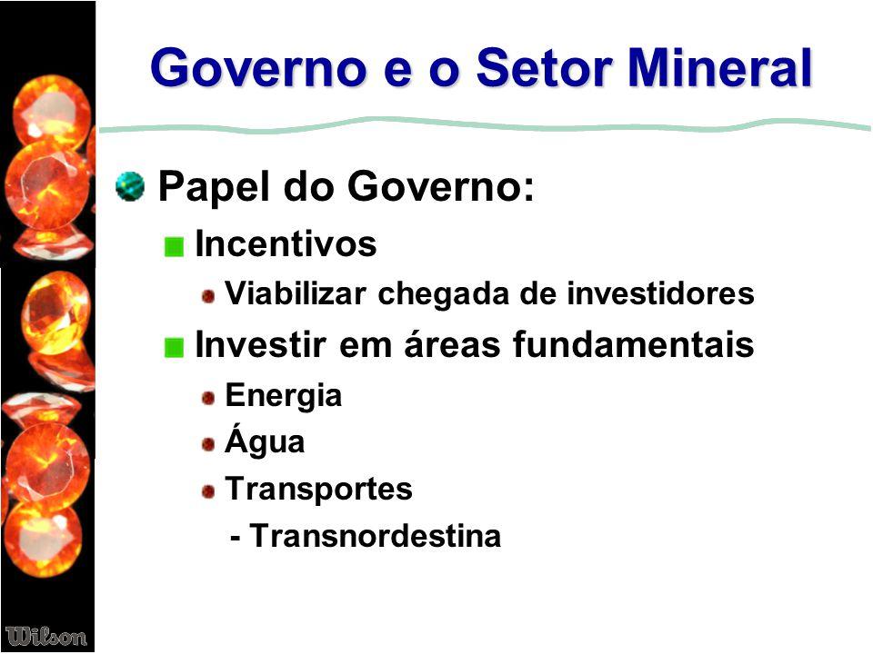 Governo e o Setor Mineral Papel do Governo: Incentivos Viabilizar chegada de investidores Investir em áreas fundamentais Energia Água Transportes - Tr