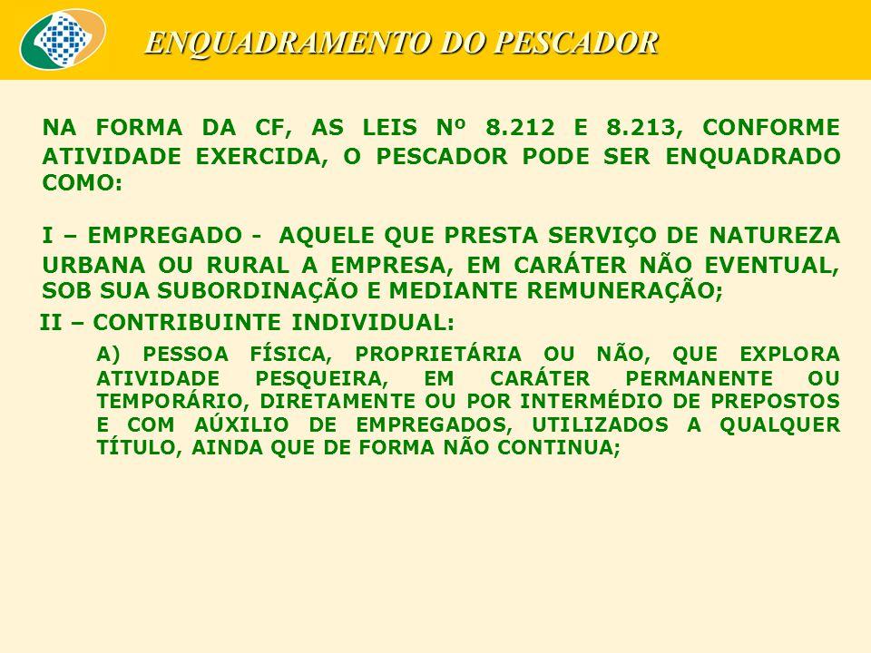 NA FORMA DA CF, AS LEIS Nº 8.212 E 8.213, CONFORME ATIVIDADE EXERCIDA, O PESCADOR PODE SER ENQUADRADO COMO: I – EMPREGADO - AQUELE QUE PRESTA SERVIÇO DE NATUREZA URBANA OU RURAL A EMPRESA, EM CARÁTER NÃO EVENTUAL, SOB SUA SUBORDINAÇÃO E MEDIANTE REMUNERAÇÃO; II – CONTRIBUINTE INDIVIDUAL: A) PESSOA FÍSICA, PROPRIETÁRIA OU NÃO, QUE EXPLORA ATIVIDADE PESQUEIRA, EM CARÁTER PERMANENTE OU TEMPORÁRIO, DIRETAMENTE OU POR INTERMÉDIO DE PREPOSTOS E COM AÚXILIO DE EMPREGADOS, UTILIZADOS A QUALQUER TÍTULO, AINDA QUE DE FORMA NÃO CONTINUA; ENQUADRAMENTO DO PESCADOR