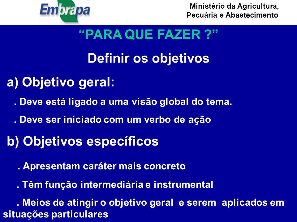 Ministério da Agricultura, Pecuária e Abastecimento PARA QUE FAZER ? Definir os objetivos a) Objetivo geral:.