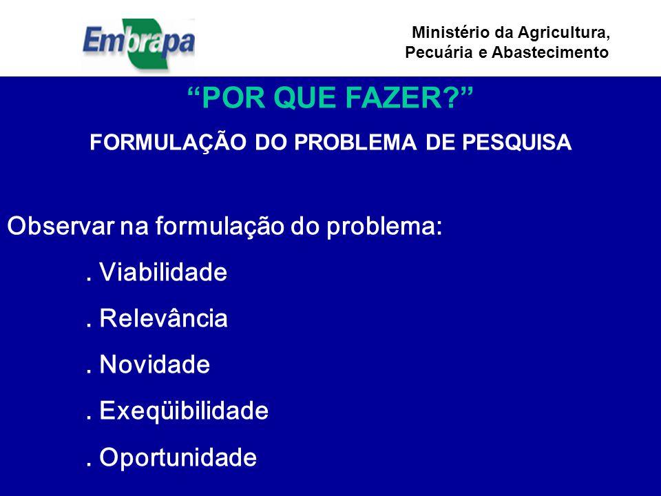 Ministério da Agricultura, Pecuária e Abastecimento POR QUE FAZER? FORMULAÇÃO DO PROBLEMA DE PESQUISA Observar na formulação do problema:.