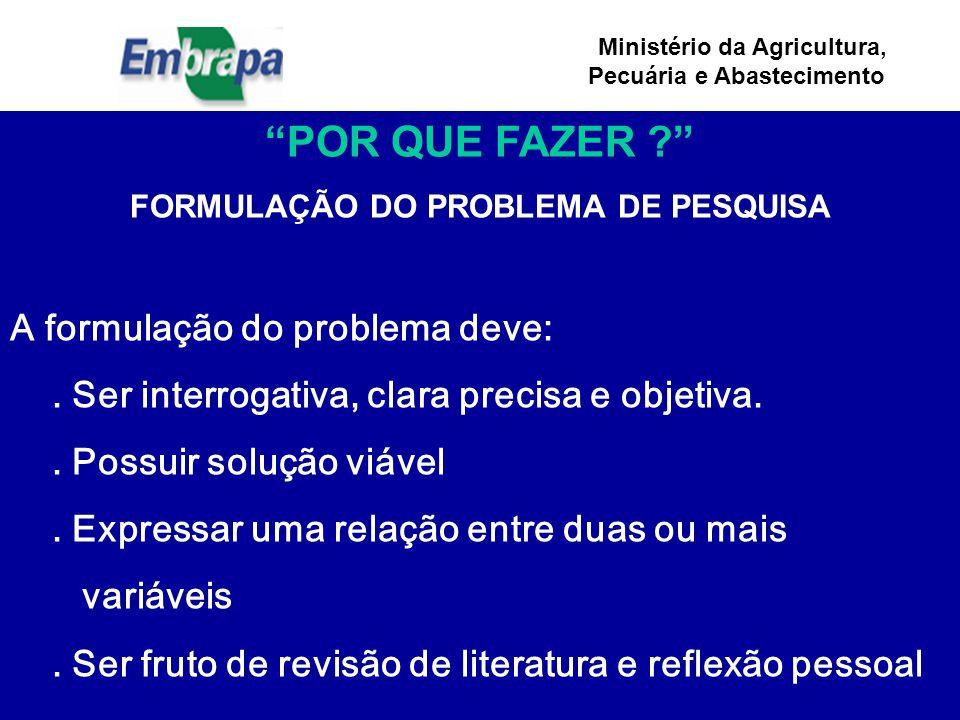 Ministério da Agricultura, Pecuária e Abastecimento POR QUE FAZER ? FORMULAÇÃO DO PROBLEMA DE PESQUISA A formulação do problema deve:.