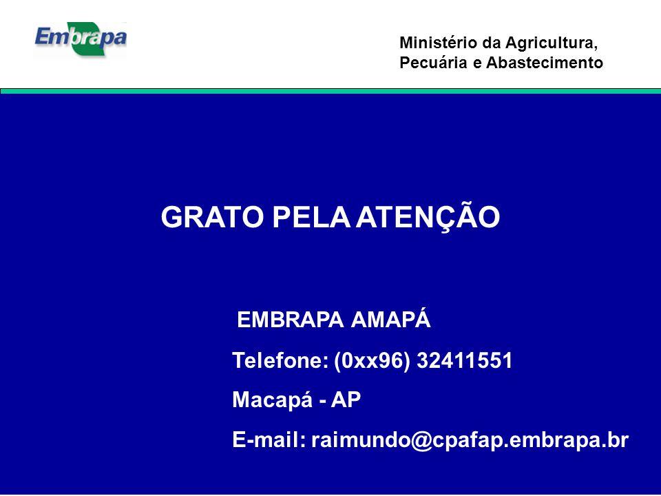 Ministério da Agricultura, Pecuária e Abastecimento GRATO PELA ATENÇÃO EMBRAPA AMAPÁ Telefone: (0xx96) 32411551 Macapá - AP E-mail: raimundo@cpafap.em