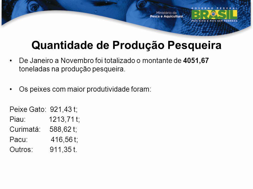 De Janeiro a Novembro foi totalizado o montante de 4051,67 toneladas na produção pesqueira. Os peixes com maior produtividade foram: Peixe Gato: 921,4