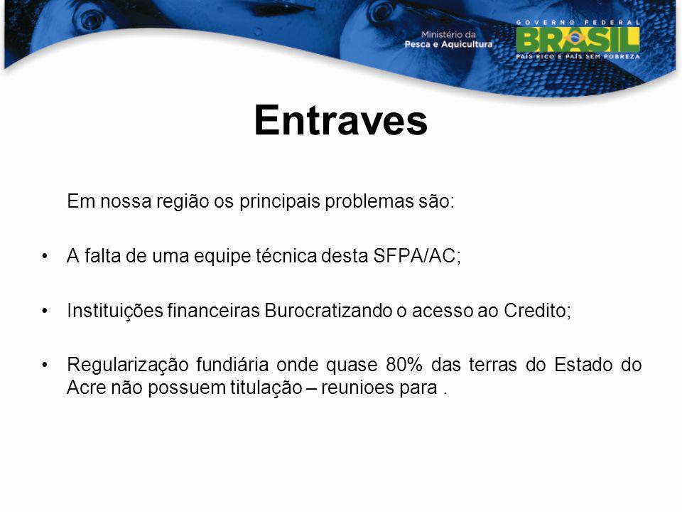 Entraves Em nossa região os principais problemas são: A falta de uma equipe técnica desta SFPA/AC; Instituições financeiras Burocratizando o acesso ao
