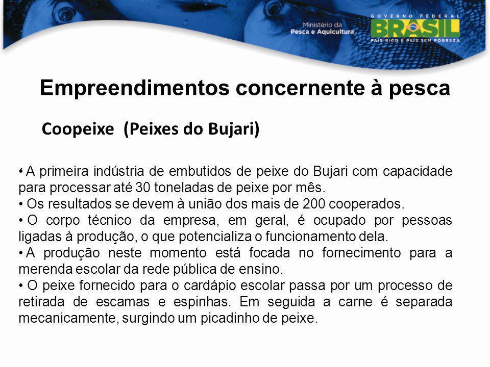 Empreendimentos concernente à pesca Coopeixe (Peixes do Bujari) A primeira indústria de embutidos de peixe do Bujari com capacidade para processar até
