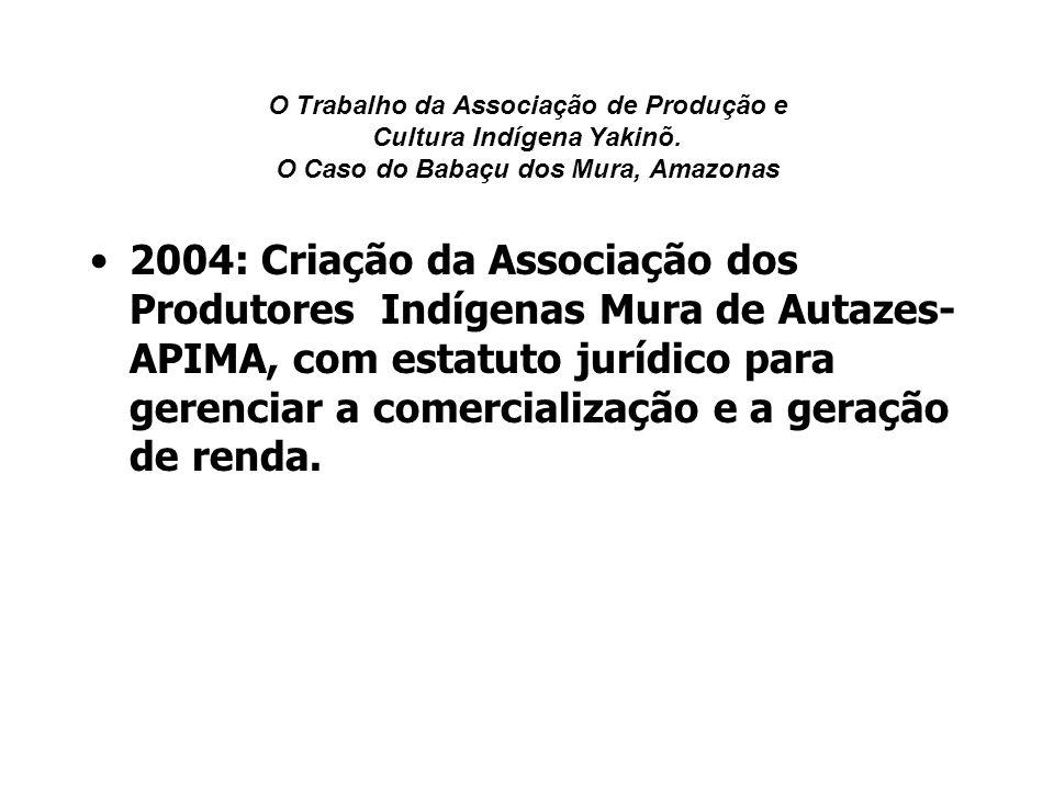 O Trabalho da Associação de Produção e Cultura Indígena Yakinõ. O Caso do Babaçu dos Mura, Amazonas 2004: Criação da Associação dos Produtores Indígen