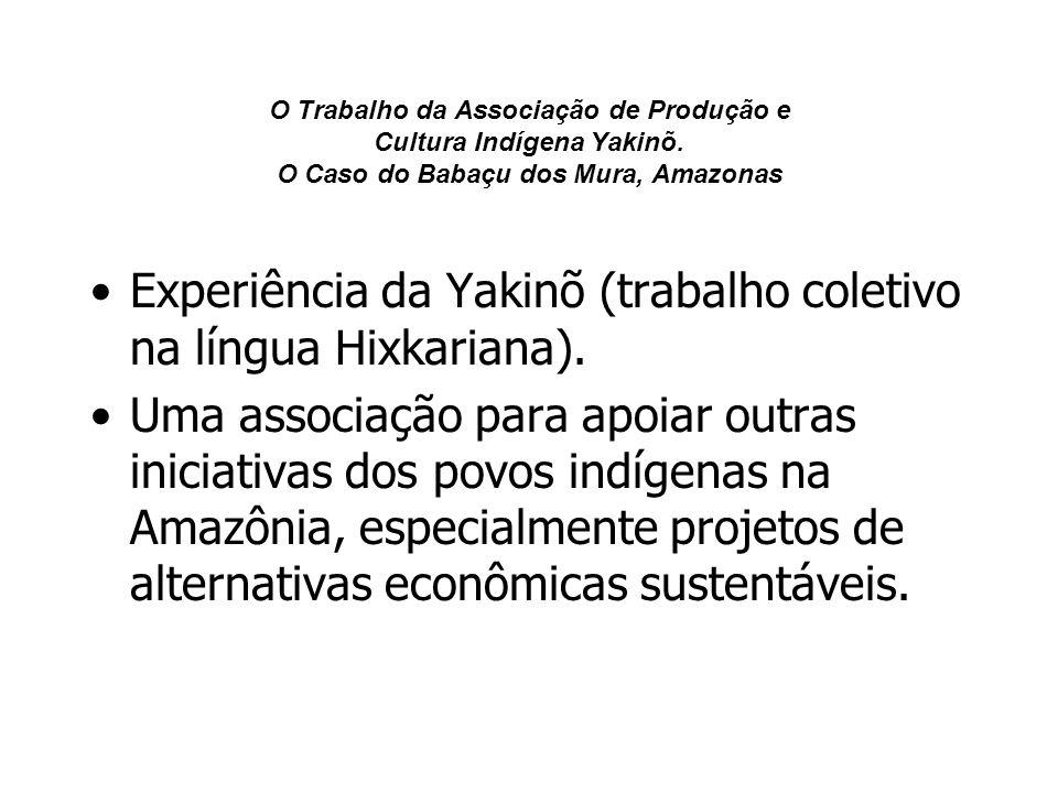 O Trabalho da Associação de Produção e Cultura Indígena Yakinõ. O Caso do Babaçu dos Mura, Amazonas Experiência da Yakinõ (trabalho coletivo na língua
