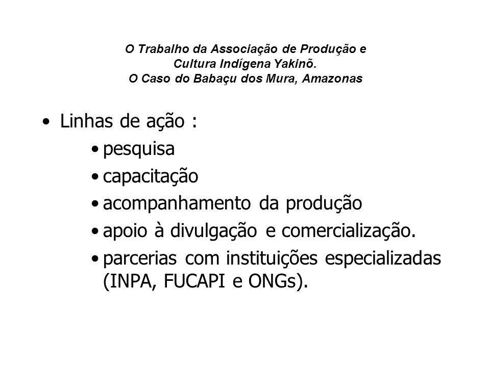 O Trabalho da Associação de Produção e Cultura Indígena Yakinõ. O Caso do Babaçu dos Mura, Amazonas Linhas de ação : pesquisa capacitação acompanhamen