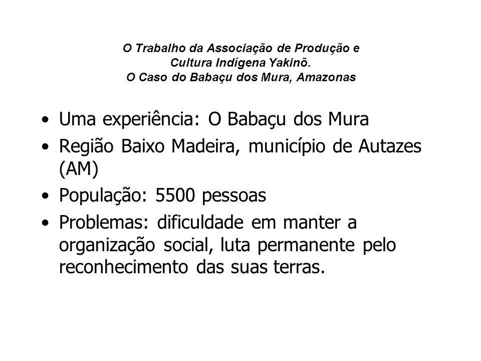 O Trabalho da Associação de Produção e Cultura Indígena Yakinõ. O Caso do Babaçu dos Mura, Amazonas Uma experiência: O Babaçu dos Mura Região Baixo Ma