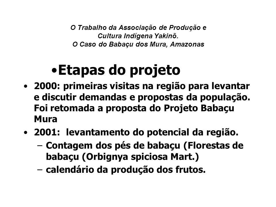 O Trabalho da Associação de Produção e Cultura Indígena Yakinõ. O Caso do Babaçu dos Mura, Amazonas Etapas do projeto 2000: primeiras visitas na regiã