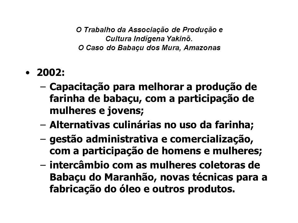 O Trabalho da Associação de Produção e Cultura Indígena Yakinõ. O Caso do Babaçu dos Mura, Amazonas 2002: –Capacitação para melhorar a produção de far
