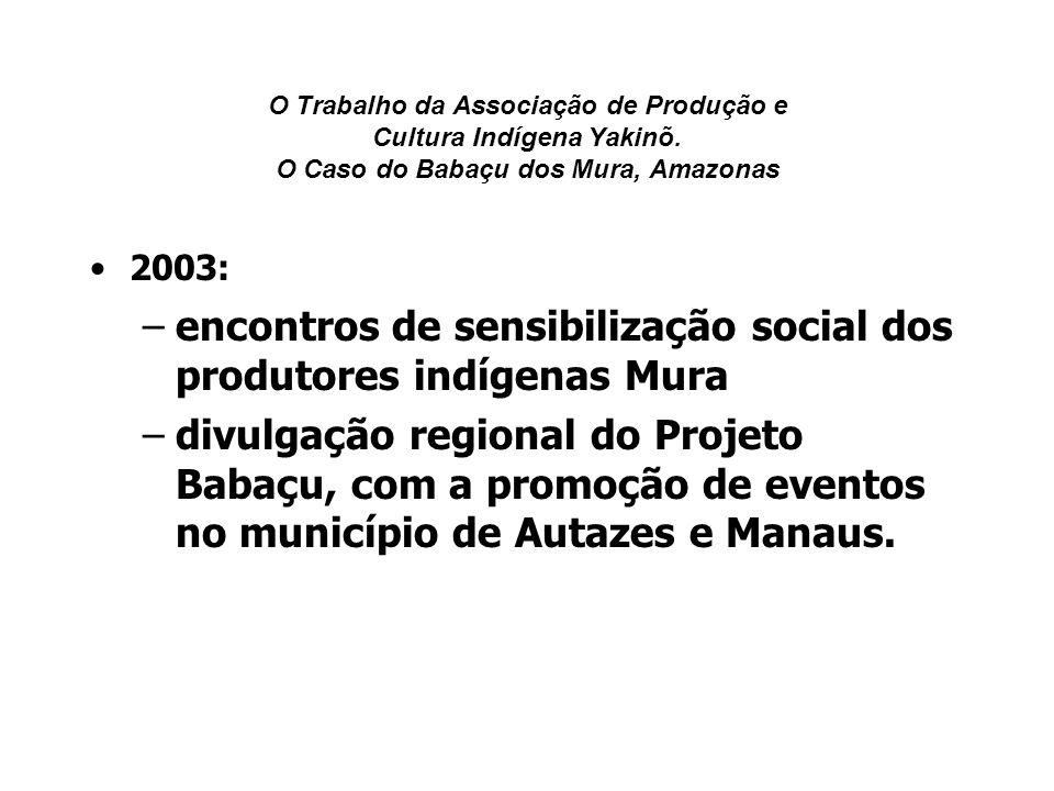O Trabalho da Associação de Produção e Cultura Indígena Yakinõ. O Caso do Babaçu dos Mura, Amazonas 2003: –encontros de sensibilização social dos prod