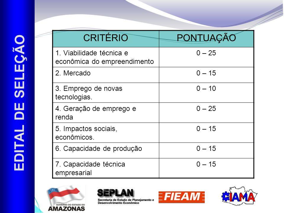 EDITAL DE SELEÇÃO CRITÉRIOPONTUAÇÃO 1.Viabilidade técnica e econômica do empreendimento 0 – 25 2.