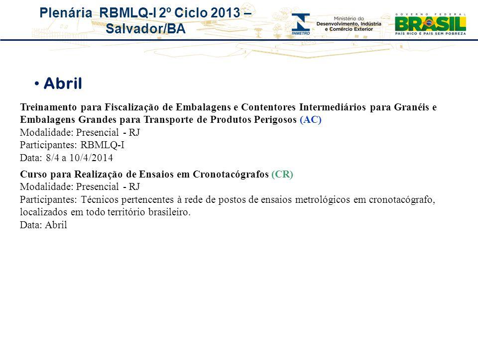 Plenária RBMLQ-I 2º Ciclo 2013 – Salvador/BA Abril Treinamento para Fiscalização de Embalagens e Contentores Intermediários para Granéis e Embalagens