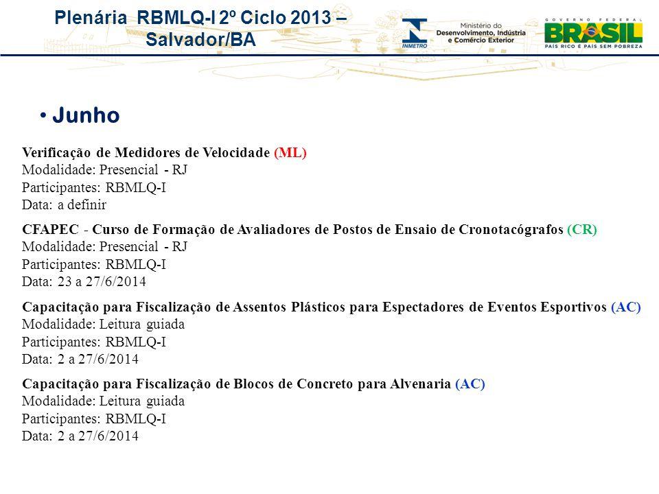 Plenária RBMLQ-I 2º Ciclo 2013 – Salvador/BA Junho Verificação de Medidores de Velocidade (ML) Modalidade: Presencial - RJ Participantes: RBMLQ-I Data