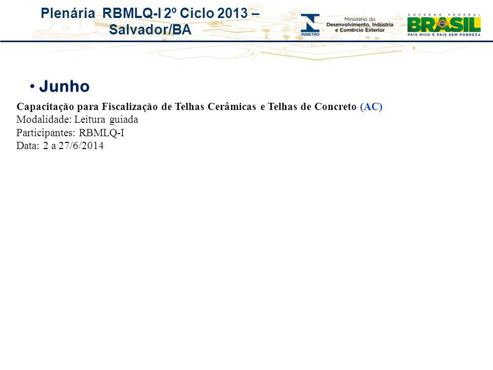 Plenária RBMLQ-I 2º Ciclo 2013 – Salvador/BA Junho Capacitação para Fiscalização de Telhas Cerâmicas e Telhas de Concreto (AC) Modalidade: Leitura gui