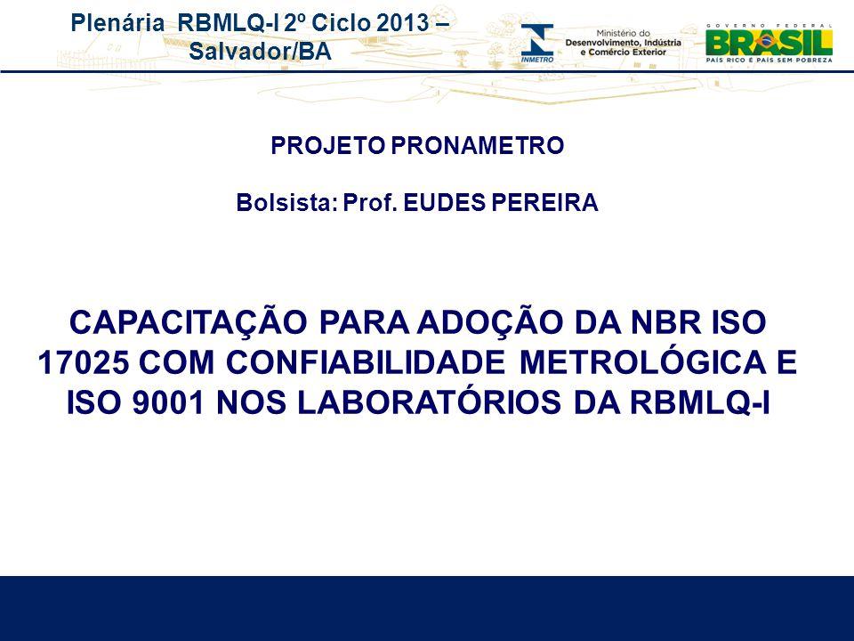 Plenária RBMLQ-I 2º Ciclo 2013 – Salvador/BA REDE DE CONSUMO SEGURO E SAÚDE DAS AMÉRICAS PROJETO PRONAMETRO Bolsista: Prof. EUDES PEREIRA CAPACITAÇÃO