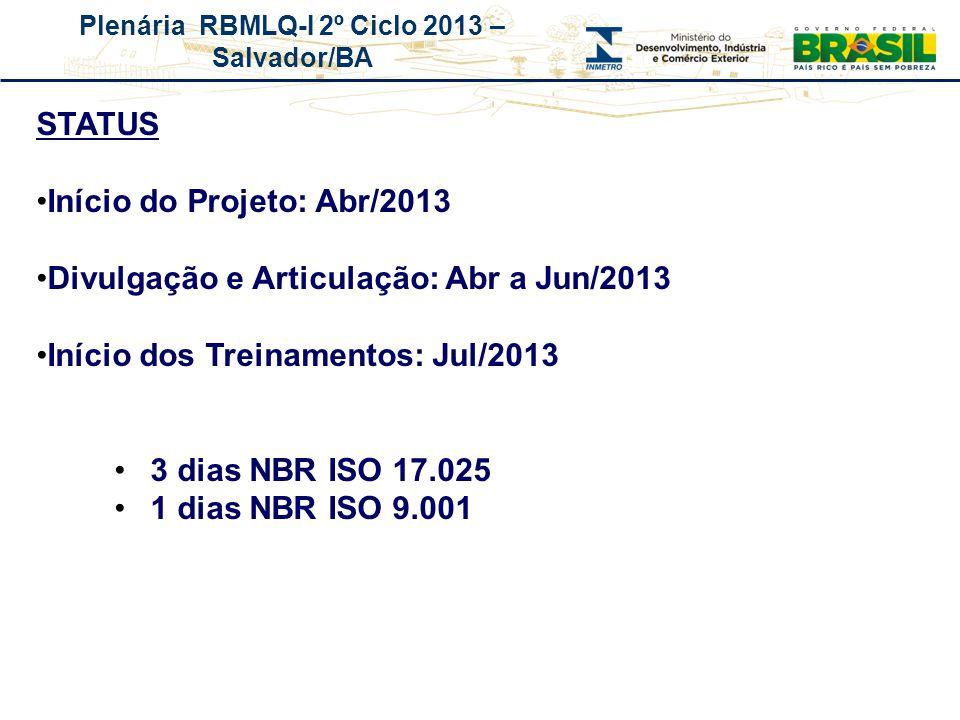 Plenária RBMLQ-I 2º Ciclo 2013 – Salvador/BA REDE DE CONSUMO SEGURO E SAÚDE DAS AMÉRICAS STATUS Início do Projeto: Abr/2013 Divulgação e Articulação: