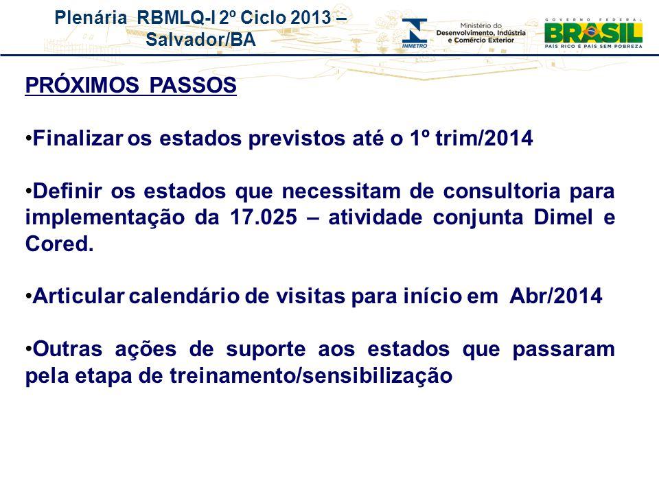 Plenária RBMLQ-I 2º Ciclo 2013 – Salvador/BA REDE DE CONSUMO SEGURO E SAÚDE DAS AMÉRICAS PRÓXIMOS PASSOS Finalizar os estados previstos até o 1º trim/