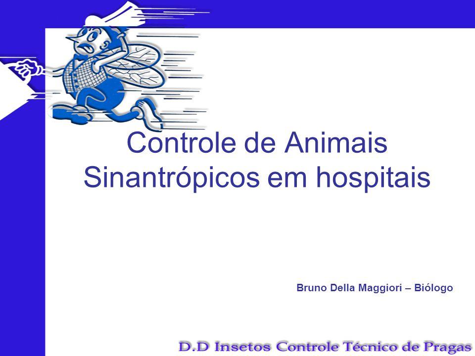 Controle de Animais Sinantrópicos em hospitais Bruno Della Maggiori – Biólogo