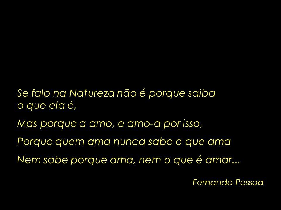 Fernando Pessoa Se falo na Natureza não é porque saiba o que ela é, Mas porque a amo, e amo-a por isso, Porque quem ama nunca sabe o que ama Nem sabe porque ama, nem o que é amar...