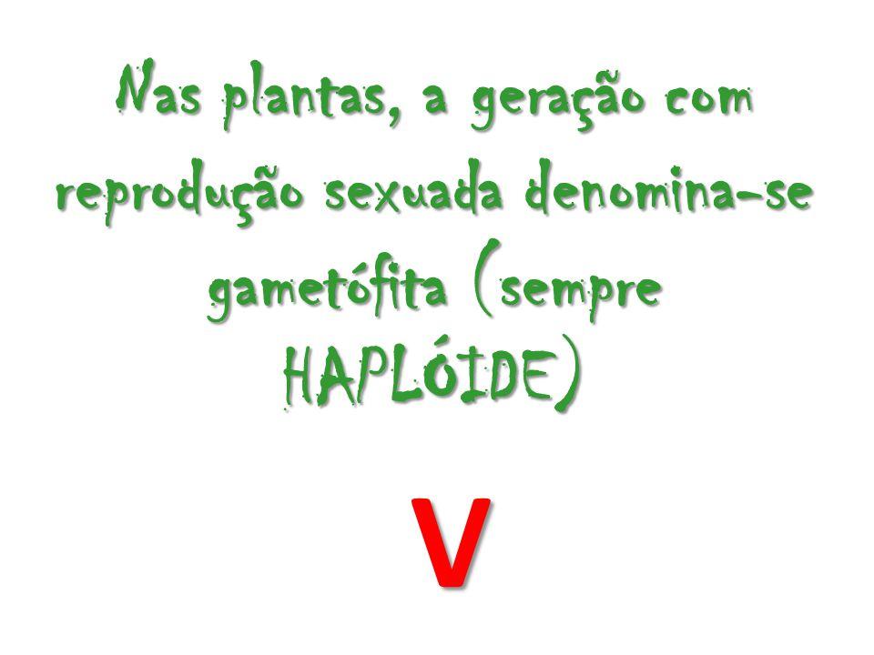 Nas plantas, a geração com reprodução sexuada denomina-se gametófita (sempre HAPLÓIDE) V