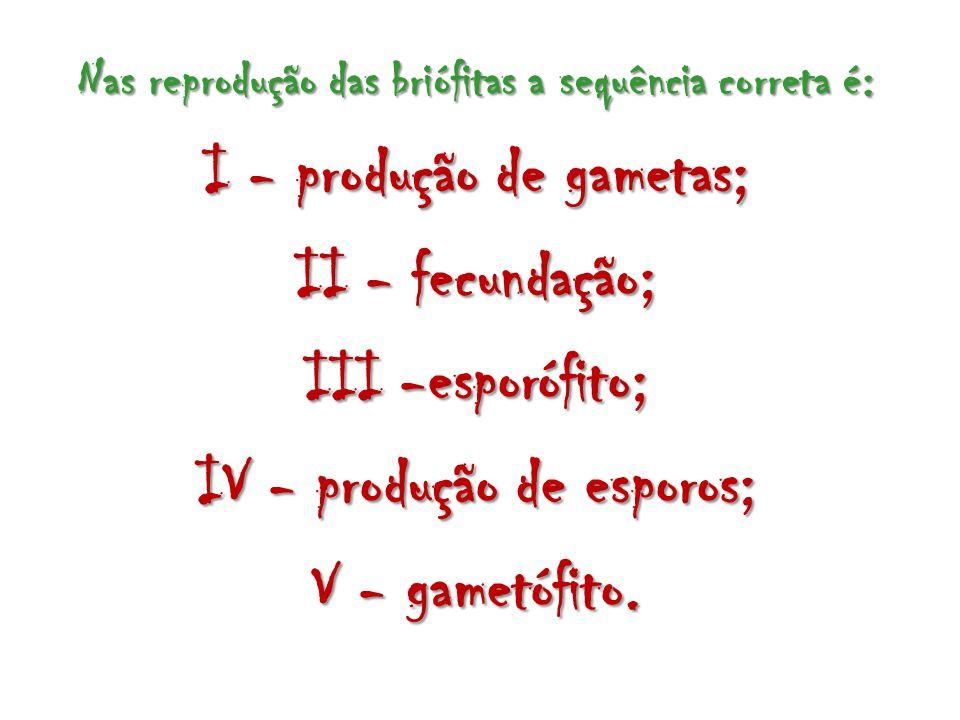 Nas reprodução das briófitas a sequência correta é: I - produção de gametas; II - fecundação; III -esporófito; IV - produção de esporos; V - gametófit