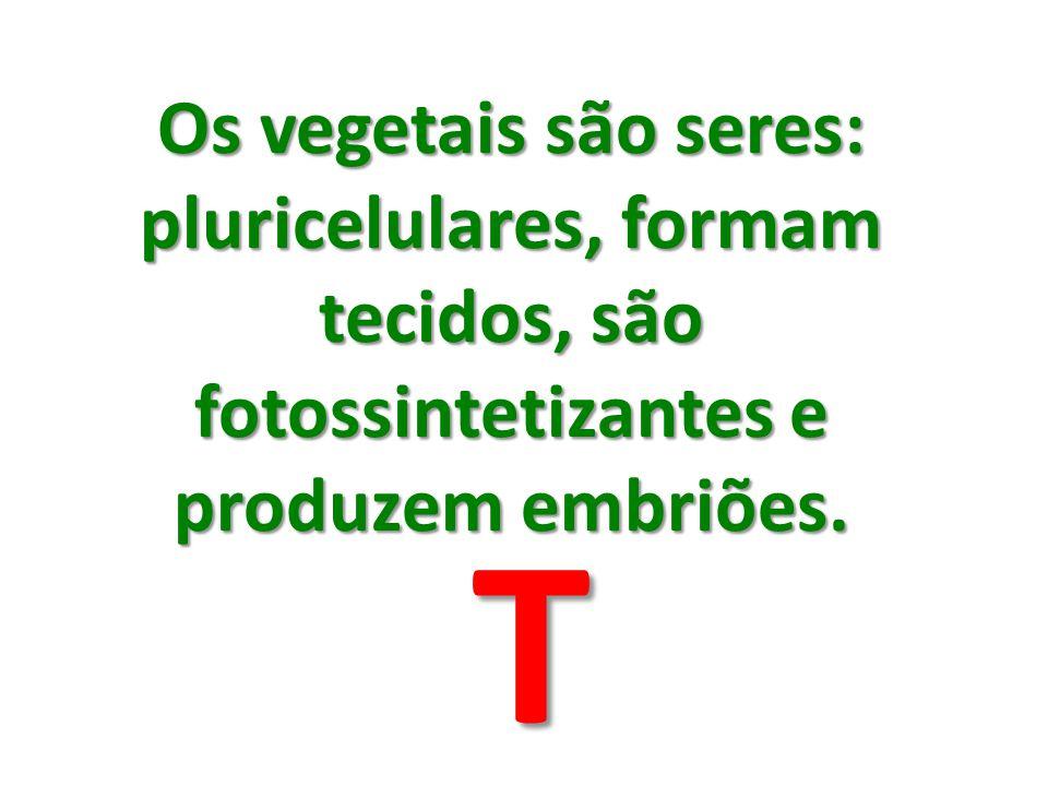 Os vegetais são seres: pluricelulares, formam tecidos, são fotossintetizantes e produzem embriões. T
