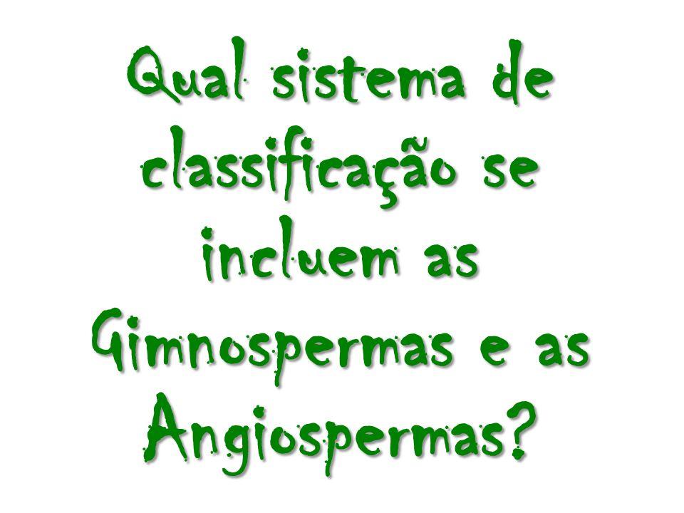 Qual sistema de classificação se incluem as Gimnospermas e as Angiospermas?