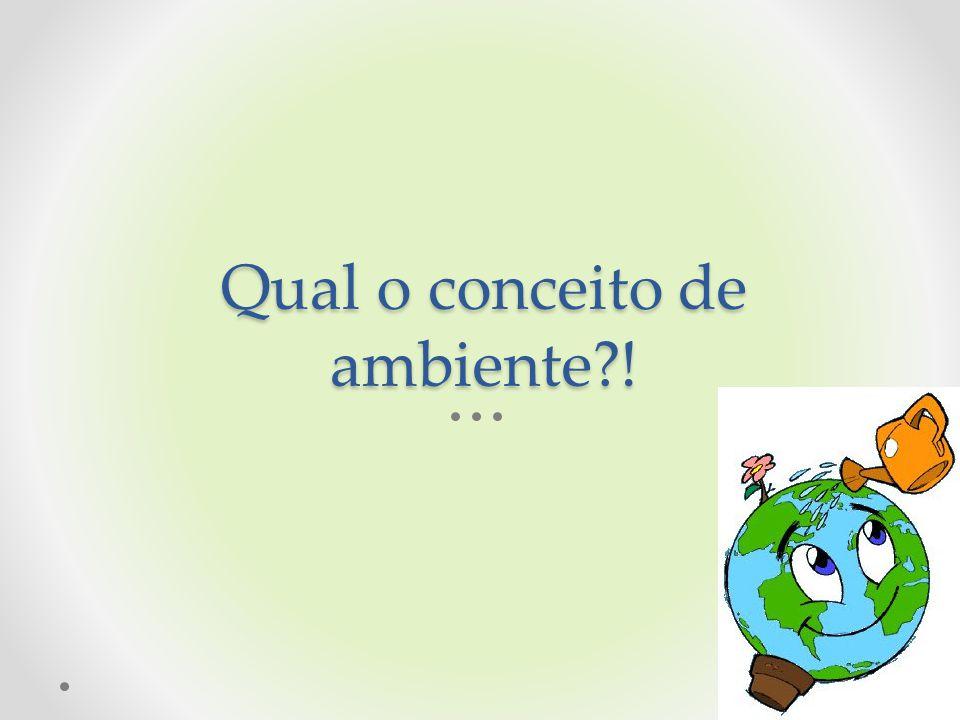 Qual o conceito de ambiente?!