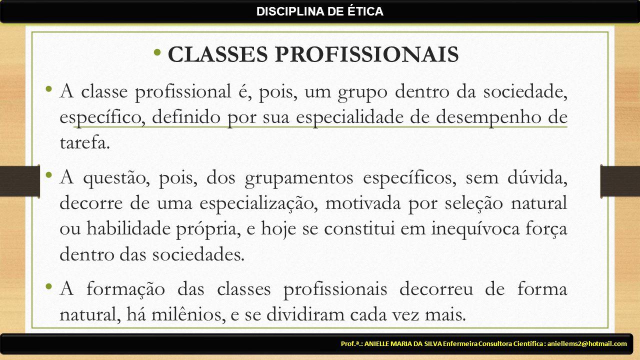 CLASSES PROFISSIONAIS A classe profissional é, pois, um grupo dentro da sociedade, específico, definido por sua especialidade de desempenho de tarefa.