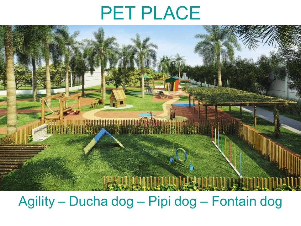 PET PLACE Agility – Ducha dog – Pipi dog – Fontain dog