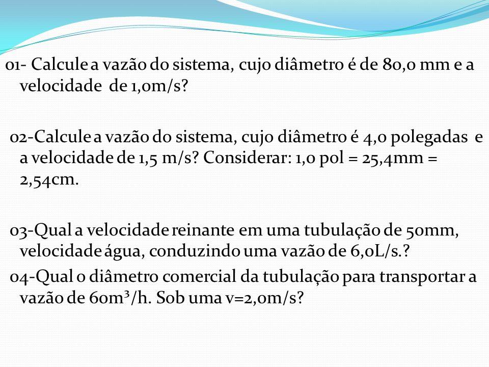 05) Calcule a perda de carga do sistema.